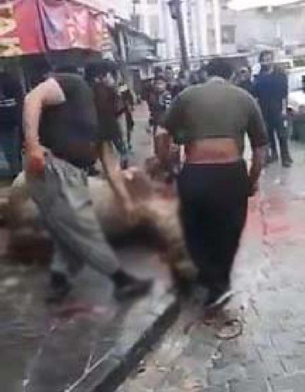 Sokak ortasında deve kesen Iraklı kasap kavga çıkardı