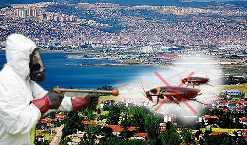 İstanbul Ataşehir Böcek İlaçlama